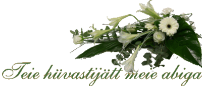 KRISTIN MATUSEBÜROO